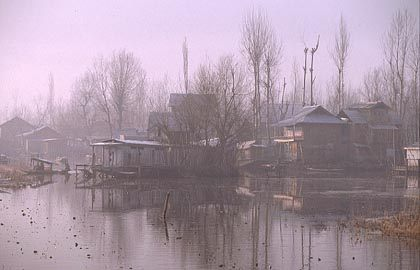 at dal lake in winter.jpg