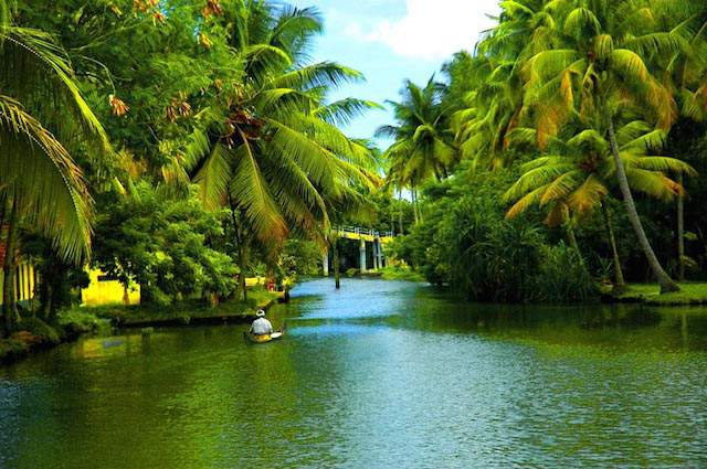 Backwaters-of-kerala.