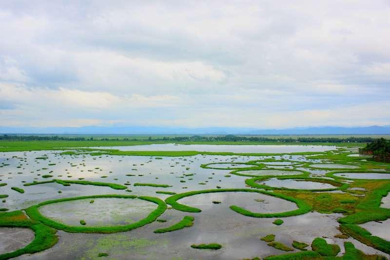 Keibul-Lamjao-National-Park.jpg