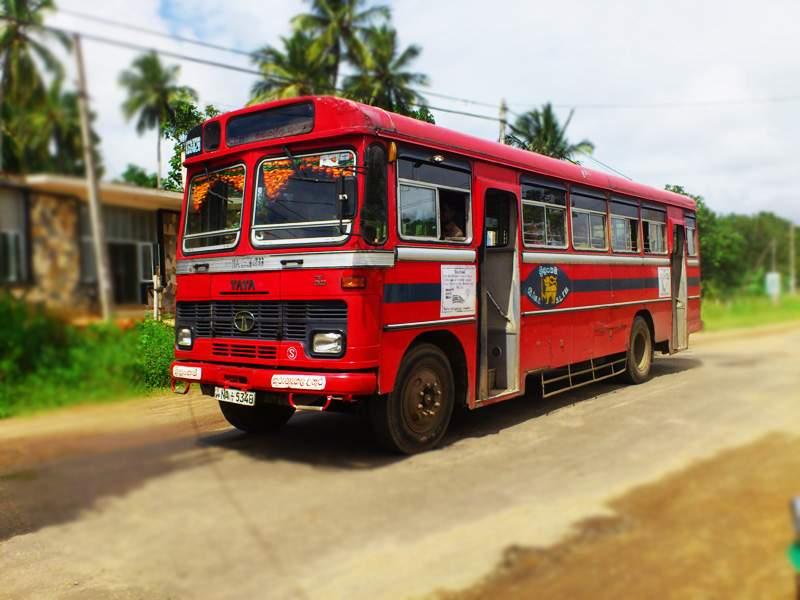 Local-Bus-in-Sri-Lanka.jpg