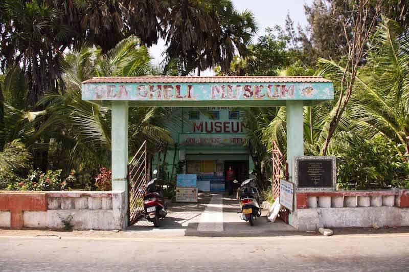 Seashell Museum Diu.