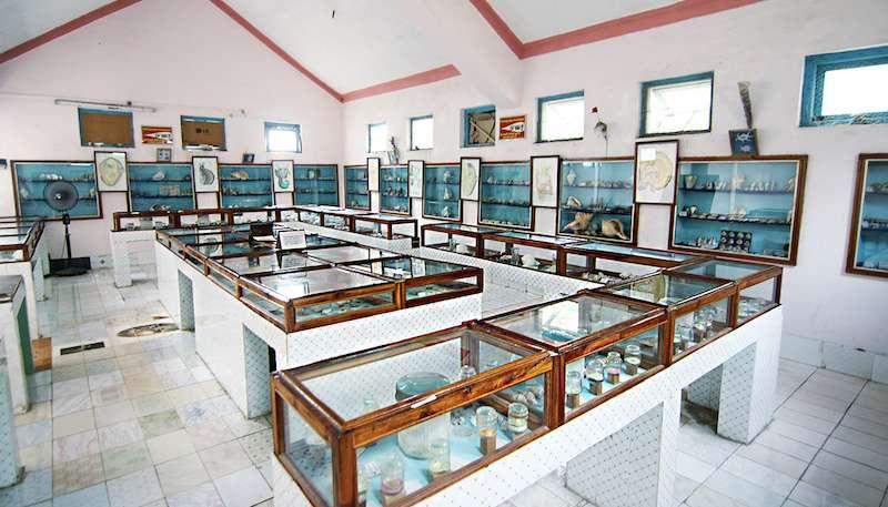 Shell Museum.jpg