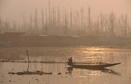 shikara at dal lake.jpg