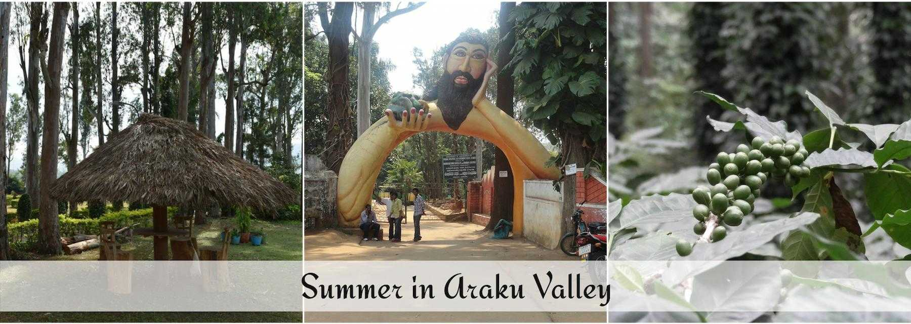 summer-in-araku-valley.jpg