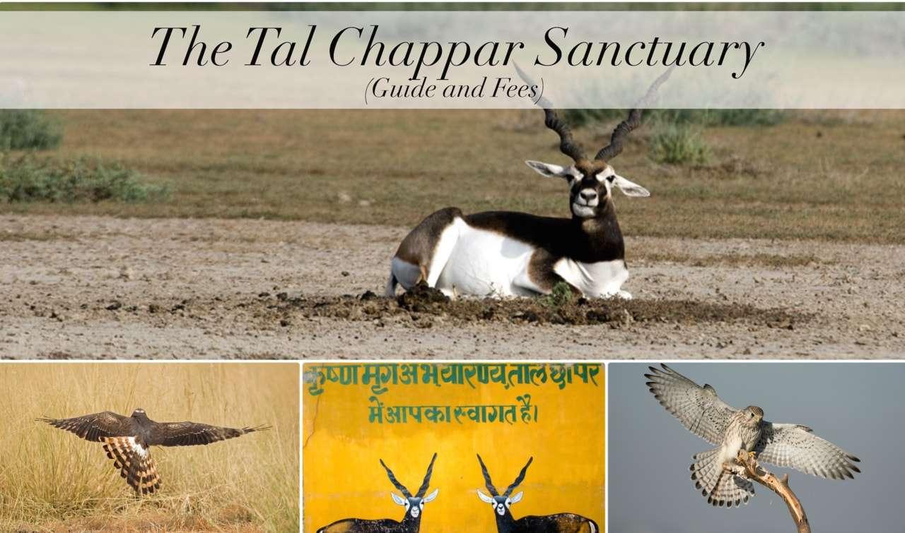 Tal-chappar-sanctuary.jpg