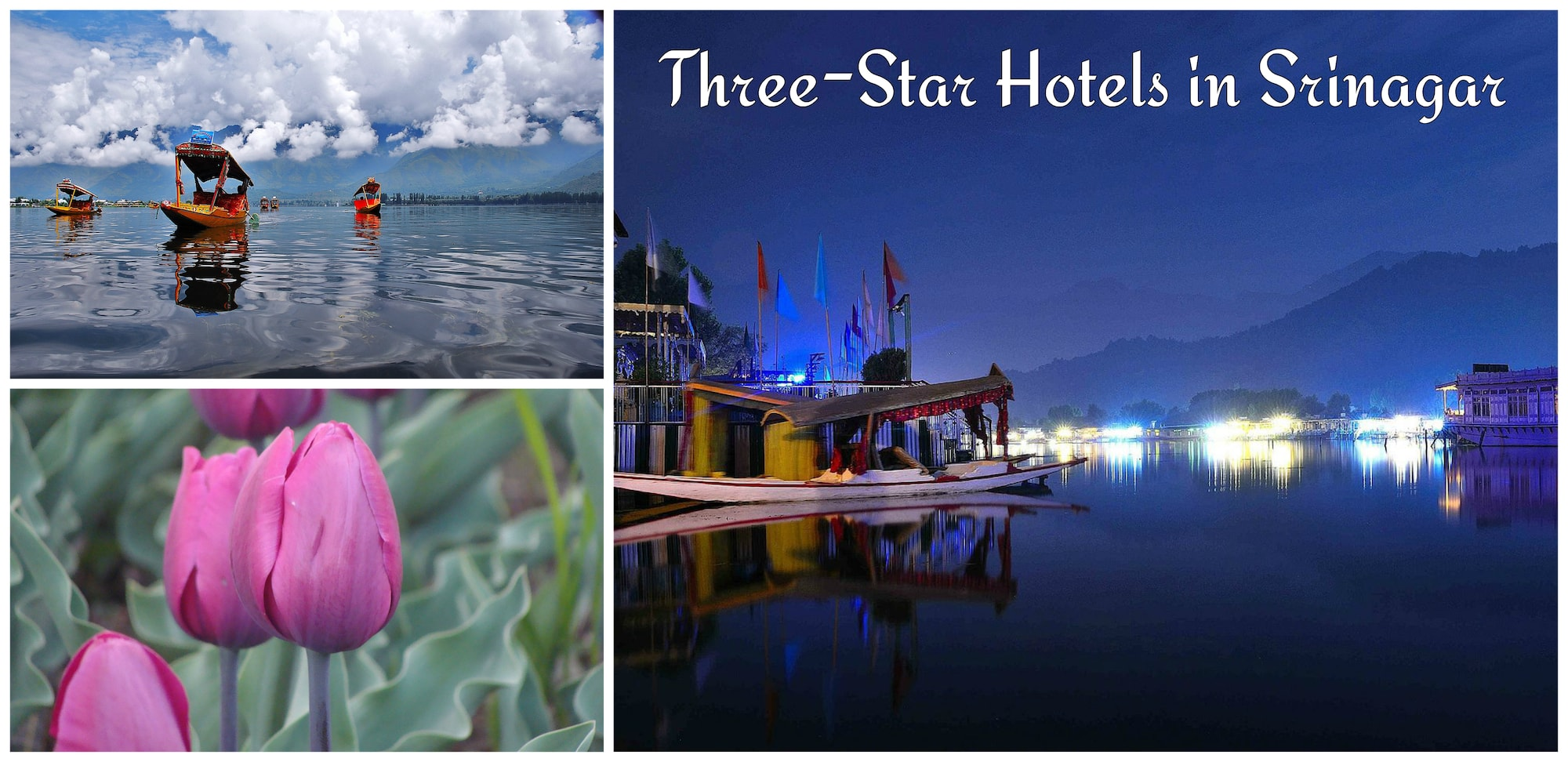 Three-Star-Hotels-Srinagar.jpg