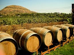 winebarrels.jpg