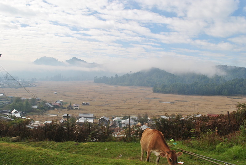 Ziro-Valley.jpg