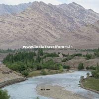 Khyamar Chu At Upshi - A Tributary Of Indus River
