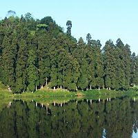 Panoramic View Of Mirik Lake - Image Courtesy @Wikitravel