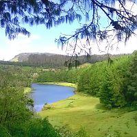 Glenmorgan Lake - Image Credit @ Debapriya_Deb