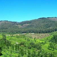 Valley View - Image Credit @ Debapriya_Deb