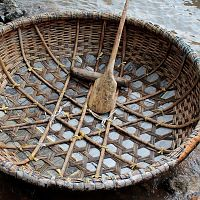 Coracle - A Closer Look
