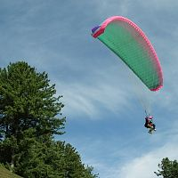 Patnitop Paragliding - Image Credit @ Wikimedia