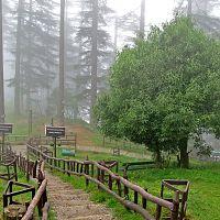 Dhanaulti - Image Credit @ Wiki