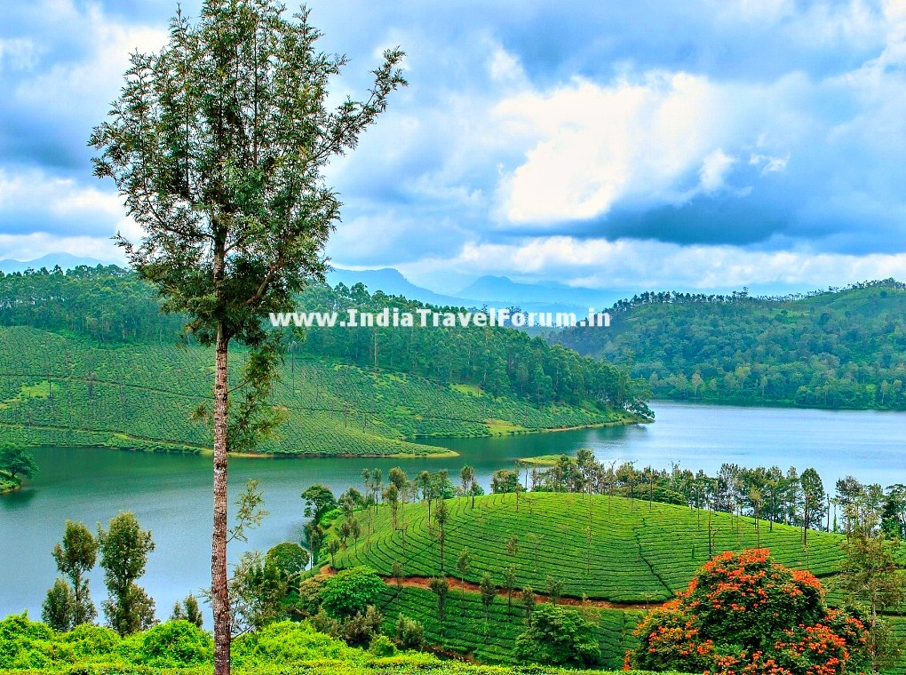 Valparai India  City pictures : Scenic Valparai | India Travel Forum